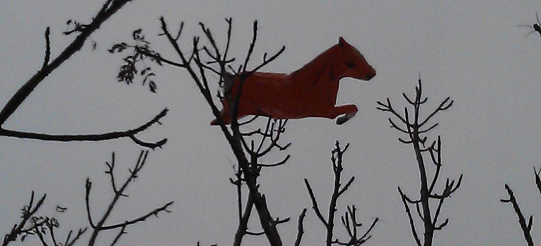 caballo-en-arbol